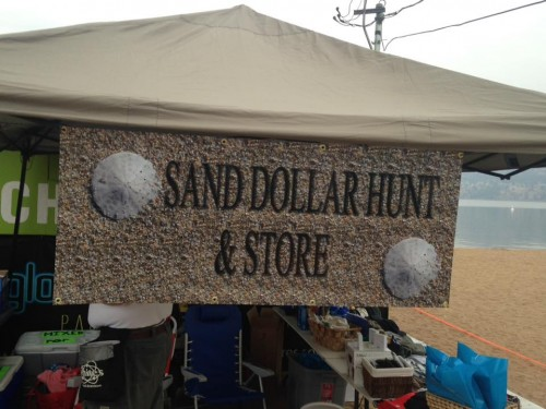 SandDollarHunt